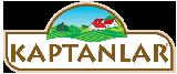normal-logo